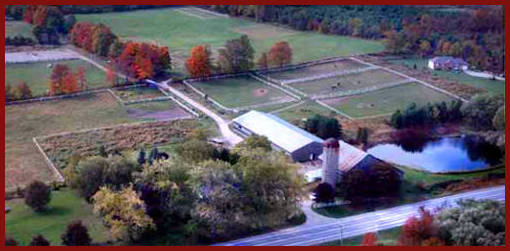 Arial View of Myrddin Farm
